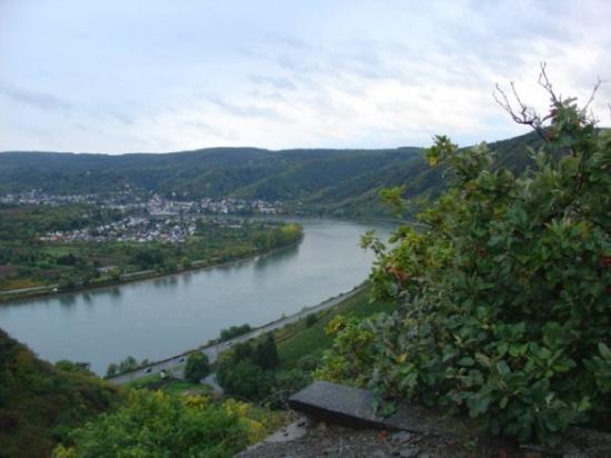 Rhine near Boppard