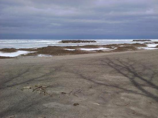 Presque Isle State Park Picture