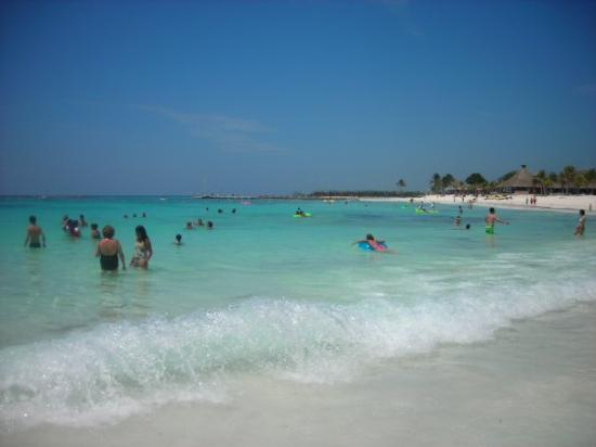 Bilde fra Dune Mexico Blue Dream
