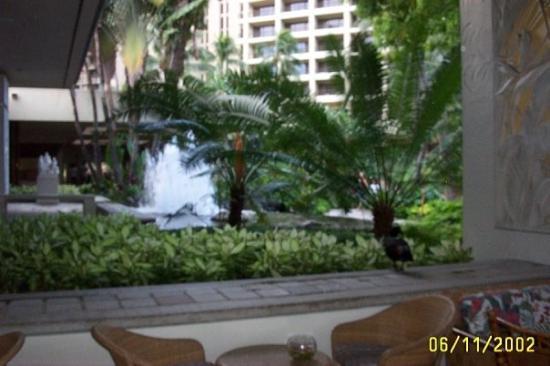 Hilton Waikiki Beach: the bar