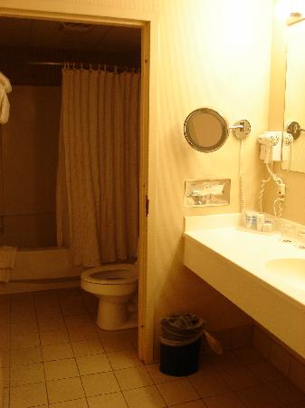 Abraham Lincoln Hotel: Bathroom