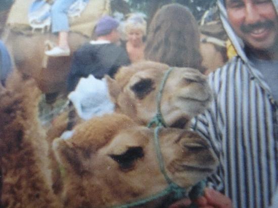 Medina of Tangier: J'AI SOIF!