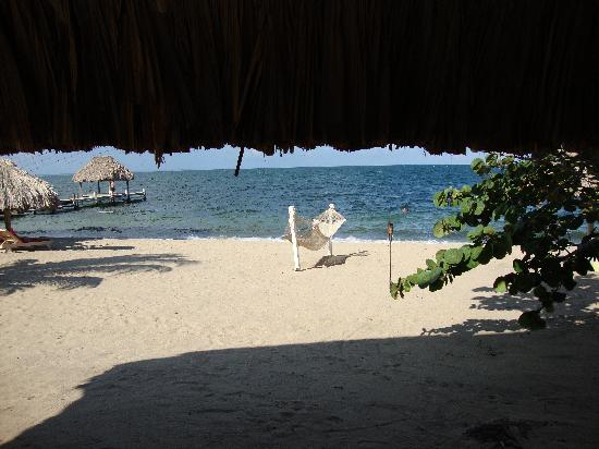 The Lodge at Jaguar Reef: View from our casita
