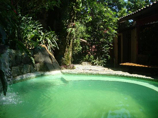 Aratinga Inn: Pool