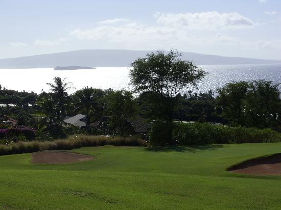 Wailea Old Blue Course: Gorgeous view of Molokini crater from a tee box.