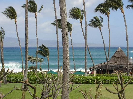 Napili Shores Maui by Outrigger: from our deck