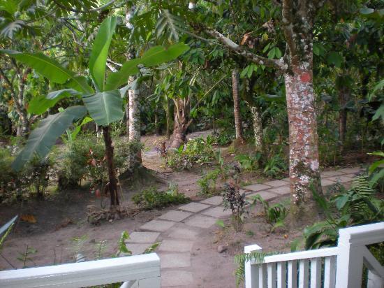 Fond Doux Plantation & Resort: Bamboo Cottage front walk