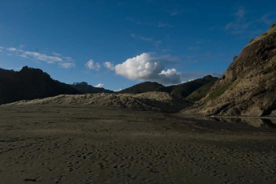 Mohio Tours: West Coast beach