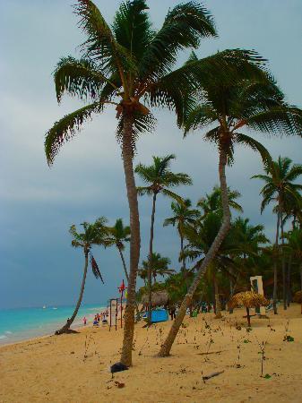 Luxury Bahia Principe Esmeralda: Beach and Palm Trees