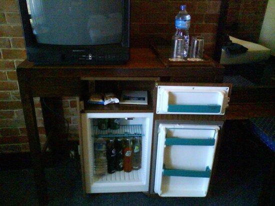 Hotel Yak & Yeti: TV and fridge