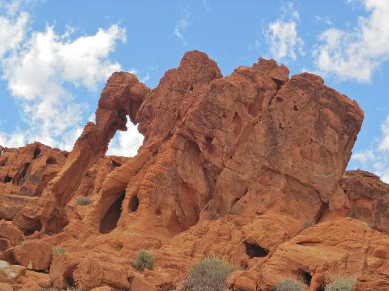 Valley of Fire State Park: Elephant Rock close up