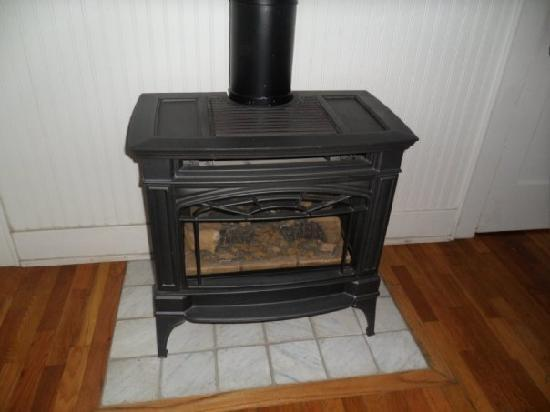 Wild Goose Inn Bed & Breakfast: electric stove in room