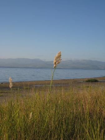 Ein-Gev Holiday Resort: Lovely view of the Sea of Galilee