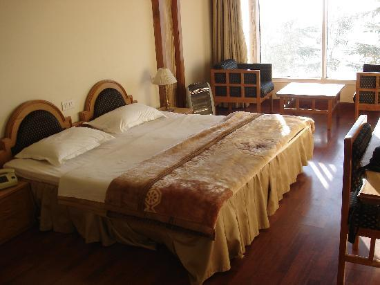 Pride Surya Mountain Resort: Our room....