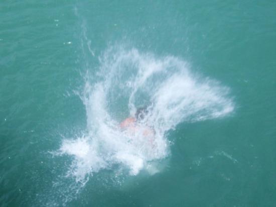 Bilde fra Ohope Beach