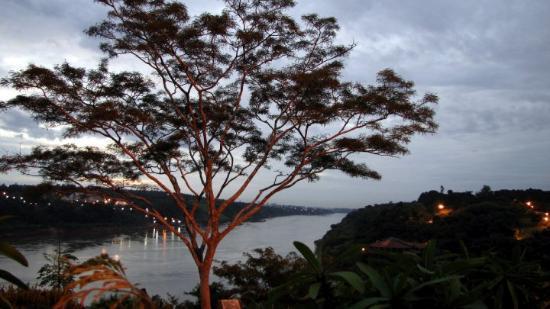 Puerto Iguazu, Argentina: Purdy