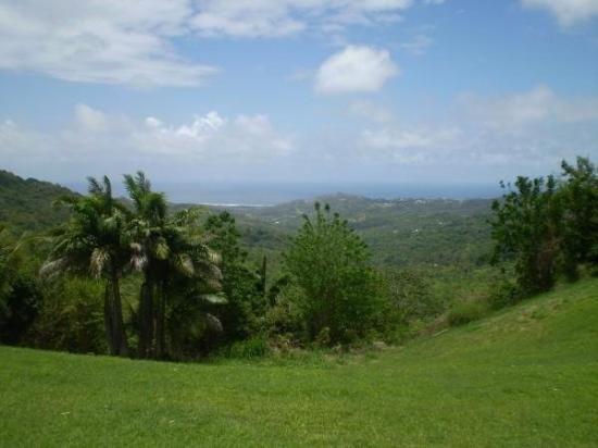 St. John's, Antigua: Barbados, Caribbean