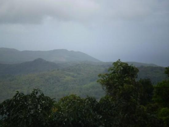 Bilde fra St. Lucia