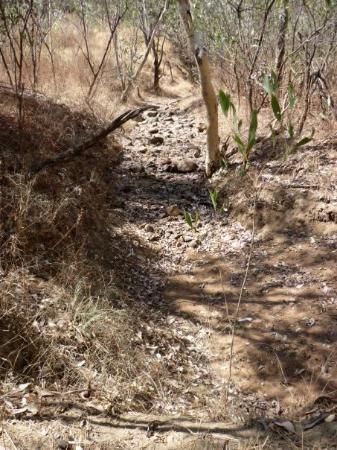 Katherine, Australia: dry creek bed