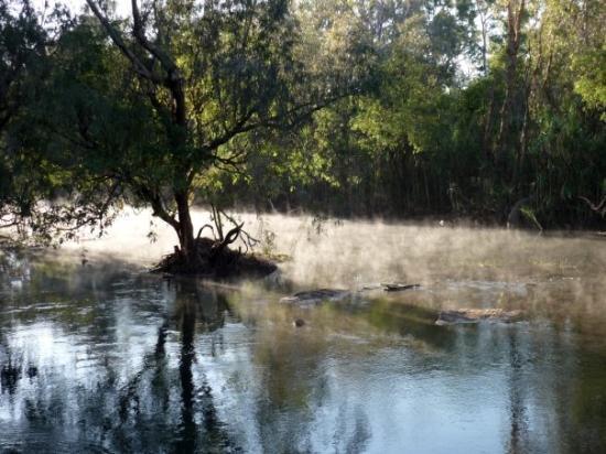 Katherine, Australia: early morning mist