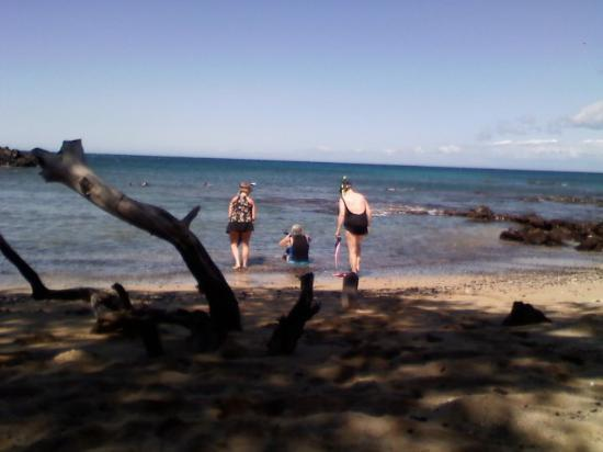 Kailua-Kona, HI: Beautiful beach 69