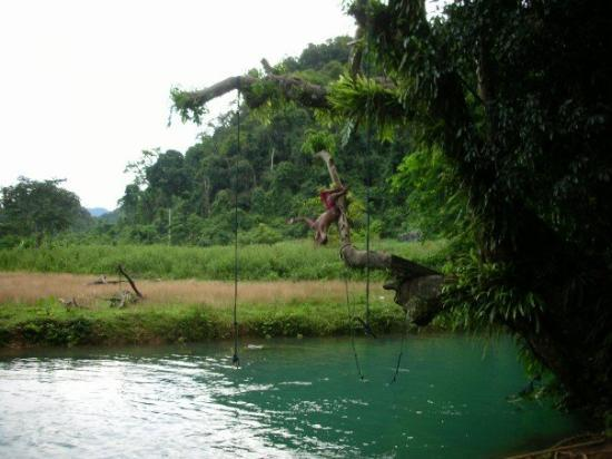 Vang Vieng, Laos: We found a swimming hole by a cave and proceeded to backflip into it.  This one's off the low br