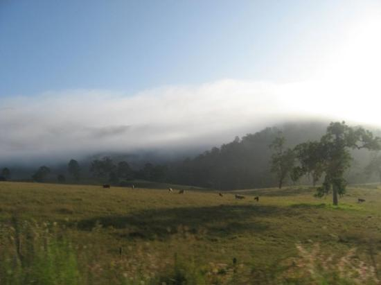 Byron Bay, Australia: Sunrise at 7:30am with fog