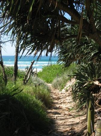 Byron Bay, Australia: Footpath leading to another beach