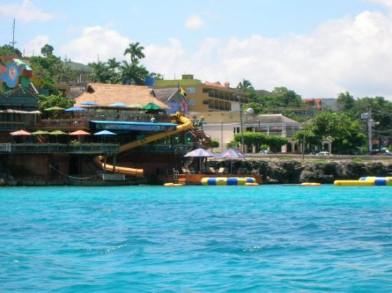 Jimmy Buffett's Margaritaville: Margarita ville!