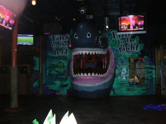 Jimmy Buffett's Margaritaville: the Shark at Margarita Ville...which just happened to be the DJ booth...pretty cool place