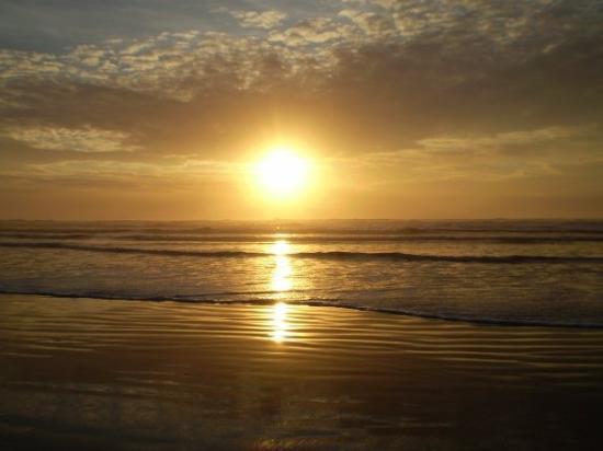 Foto Ocean Shores