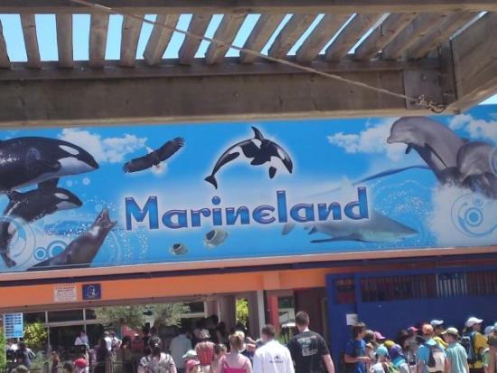 Antibes, Frankrike: marineland