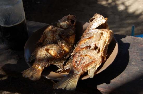 Awasa, Etiopia: fish  5B