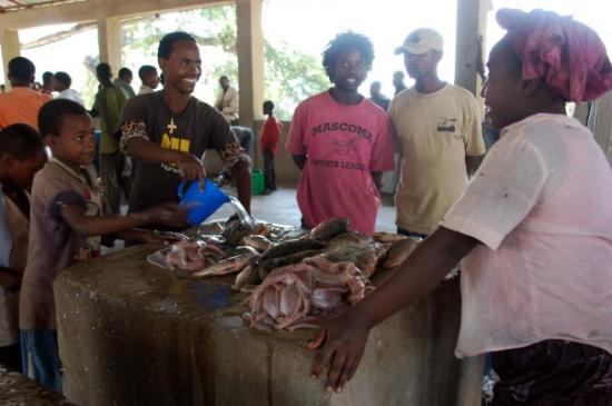 Fish Market in Awasa