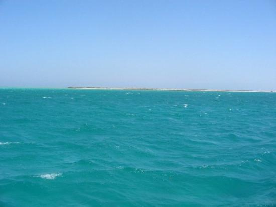 Bilde fra Giftun Islands