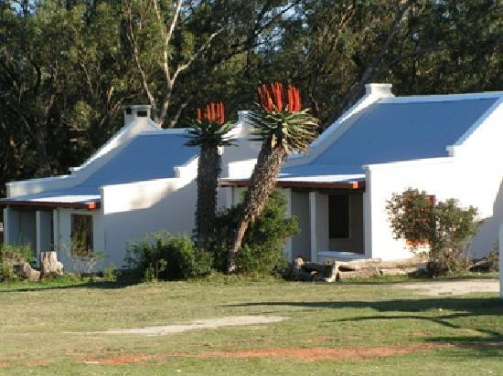 Oyster Bay Lodge: Luxury Chalets