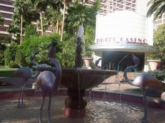 Flamingo Las Vegas Hotel & Casino: huge!