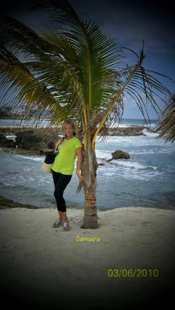 Grand Palladium Lady Hamilton Resort & Spa: Lucea, Caribbean-me an Palm Tree