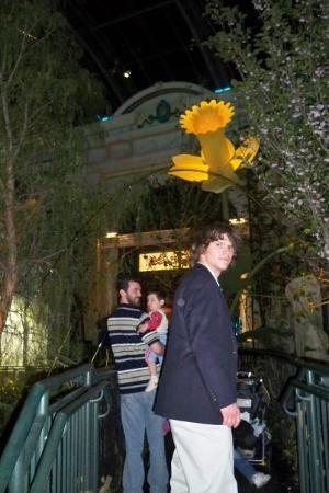 Bellagio Conservatory & Botanical Garden: jake there