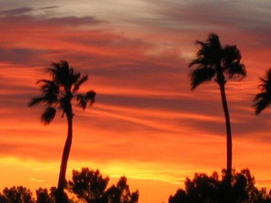Tucson, AZ: WATCHING THE SUN GO DOWN