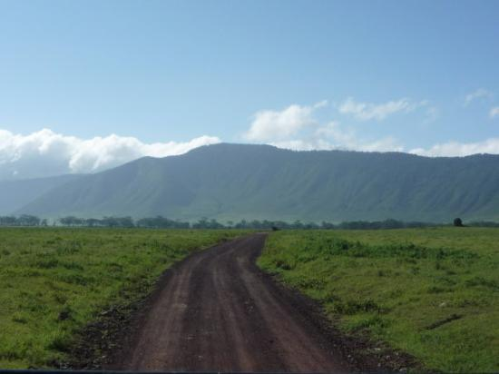 Ngorongoro Conservation Area, Tanzania: inside the crater