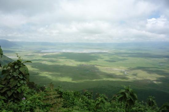 Ngorongoro Conservation Area, Tanzania: Overlooking the Ngorongoro Crater, 800 meters deep. Was a volcano 2-3 million years ago, it has