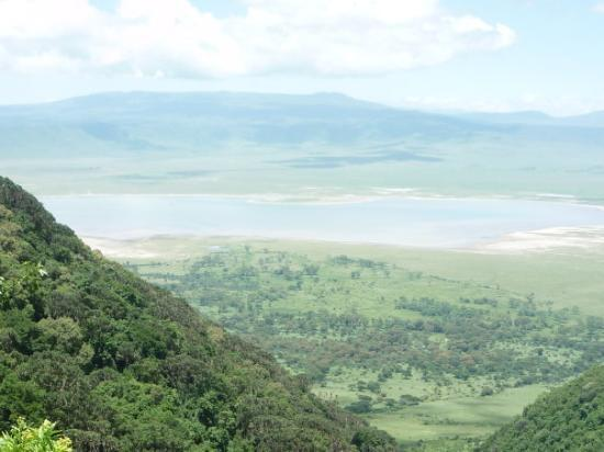 Ngorongoro Conservation Area, Tanzania: Our ascent out of the crater, I was close to tears at looking down, we were so close to the edge