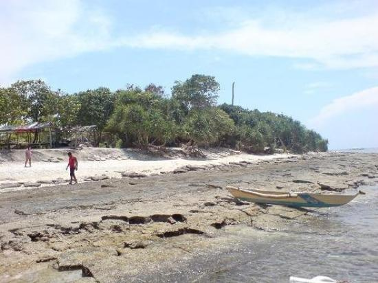 Bilde fra Panglao Island