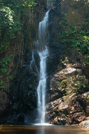 Berjaya Langkawi Resort - Malaysia: Waterfall
