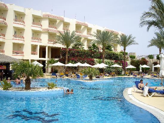 Hilton Sharks Bay Resort: Big pool on old side