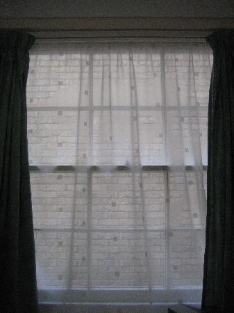 Elmwood Hotel: Blick aus dem Fenster