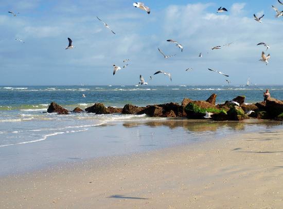 Oceanview Lodge Vilano Beach