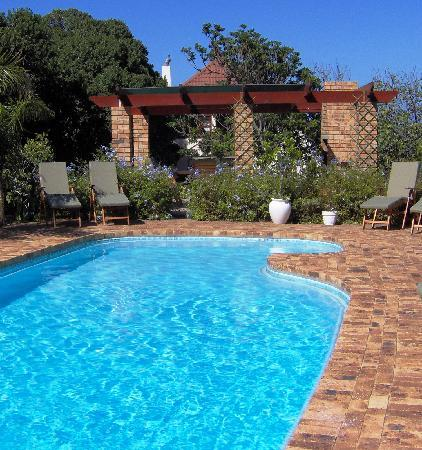 Milkwood Lodge: Swimming pool