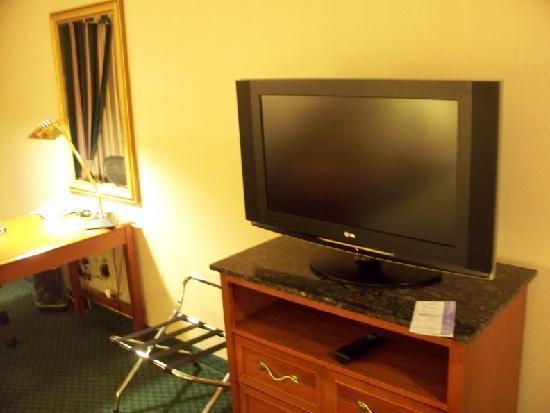 Hilton Garden Inn Minneapolis Eagan: TV & work desk